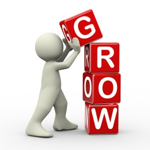 How to attract visitors to your website and grow your business